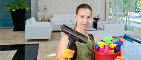 Professional Cleaning Services Oakville