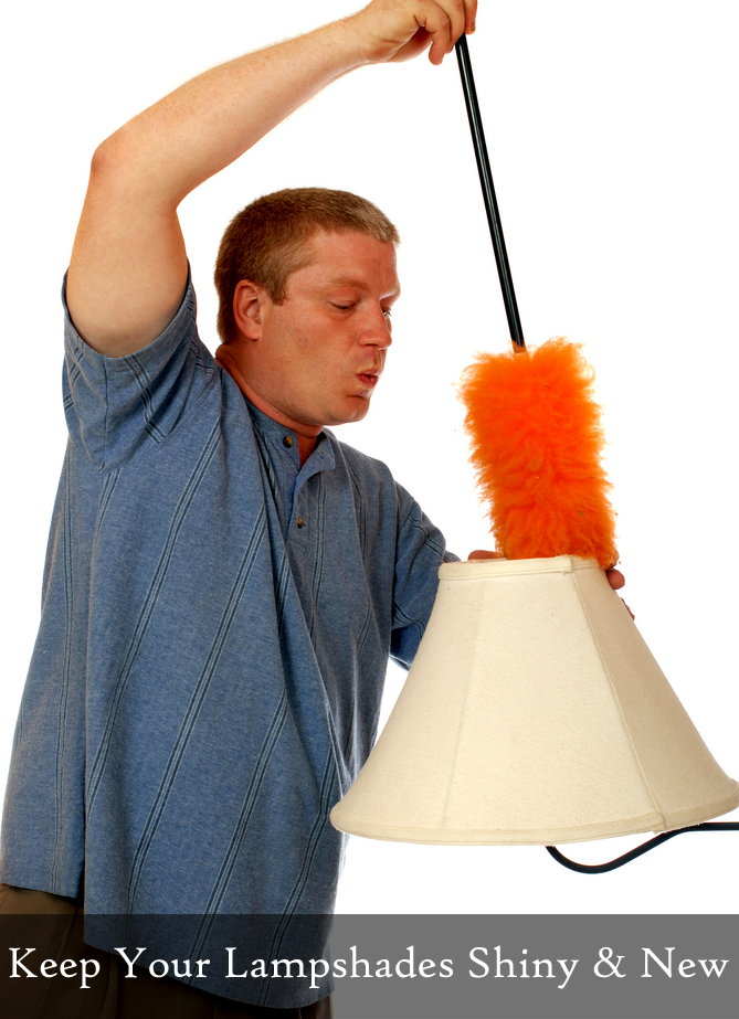 Lampshade Cleaning